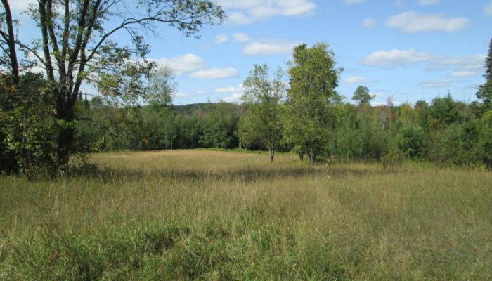 Huffman Lake Dr 80 Acres, MLS #310357 Hunley